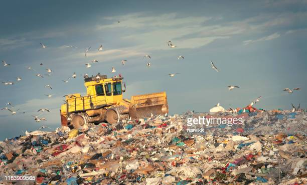 refuse compactor working at junkyard - rubbish stock pictures, royalty-free photos & images