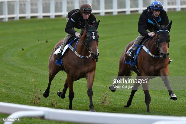Regan Bayliss riding Houtzen during track gallops with stablemate Eptimum at Moonee Valley Racecourse on September 5 2017 in Melbourne Australia