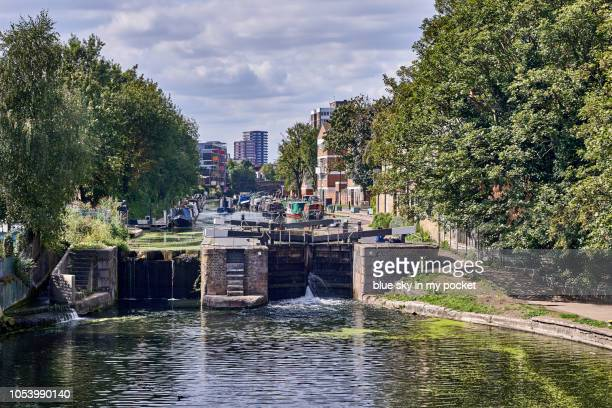 a regent's canal lock, in summer, with no people. - east london stock pictures, royalty-free photos & images