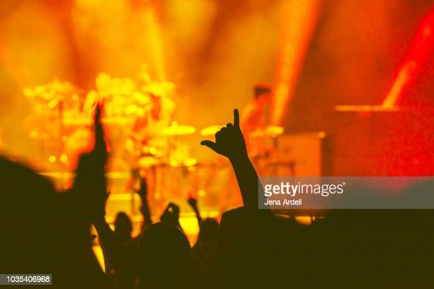 reggae concert, hands up concert, concert - reggae stock photos and pictures