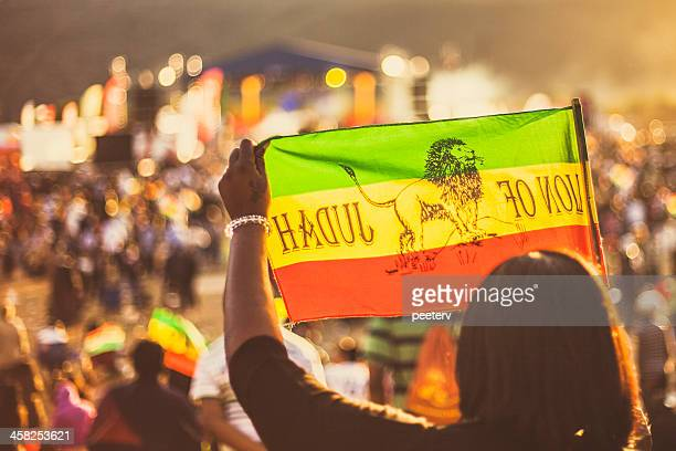 reggae crowd with rasta flags. - reggae stock photos and pictures