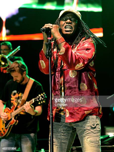 Reggae legend Alpha Blondy performs during the 30th Annual Reggae On The River Festival on August 3, 2014 in Piercy, California.