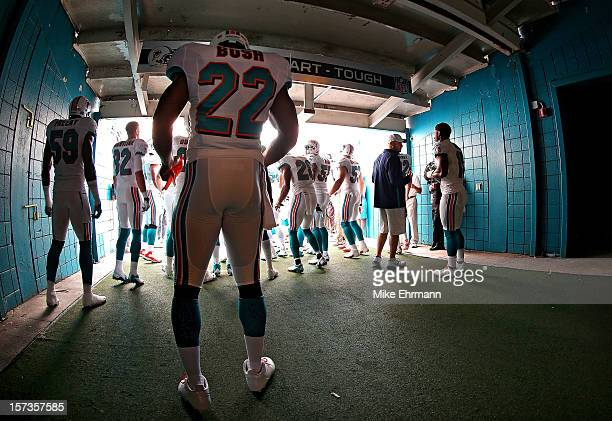 Reggie Bush of the Miami Dolphins prepares to take the field during a game against the New England Patriots at Sun Life Stadium on December 2 2012 in...