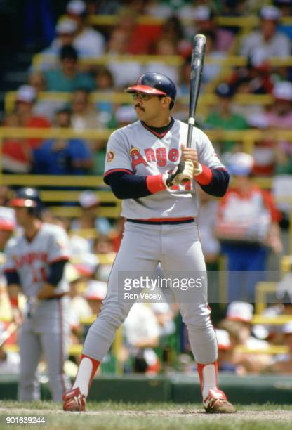Reggie Jackson of the California Angels bats during an MLB game versus the Chicago White Sox at Comiskey Park in Chicago Illinois during the 1986...