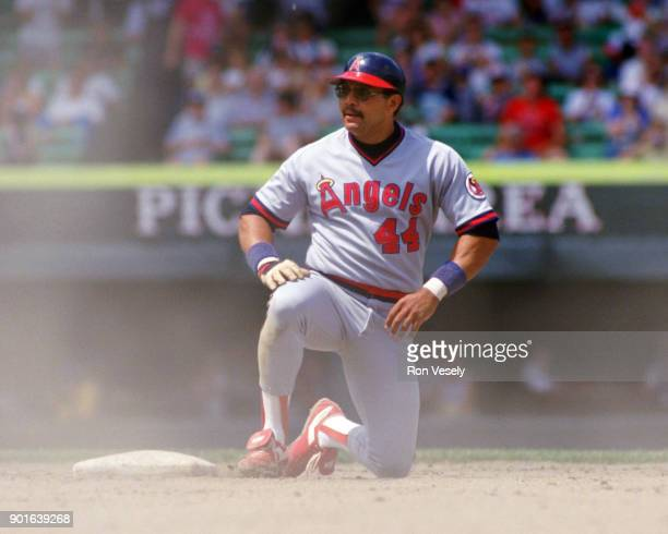 Reggie Jackson of the California Angels looks on during an MLB game versus the Chicago White Sox at Comiskey Park in Chicago Illinois during the 1986...