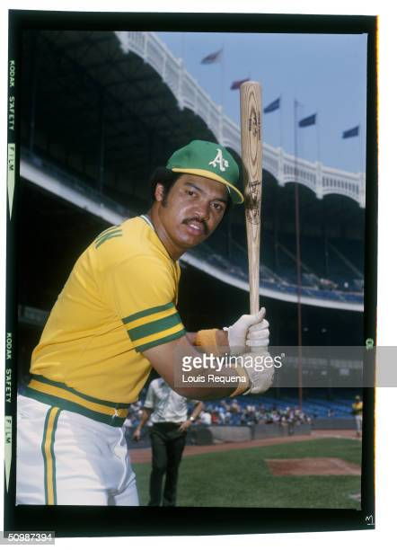 Reggie Jackson of the Oakland Athletics poses for an action portrait circa 1972 at Yankee Stadium in Bronx New York Reggie Jackson played for the...