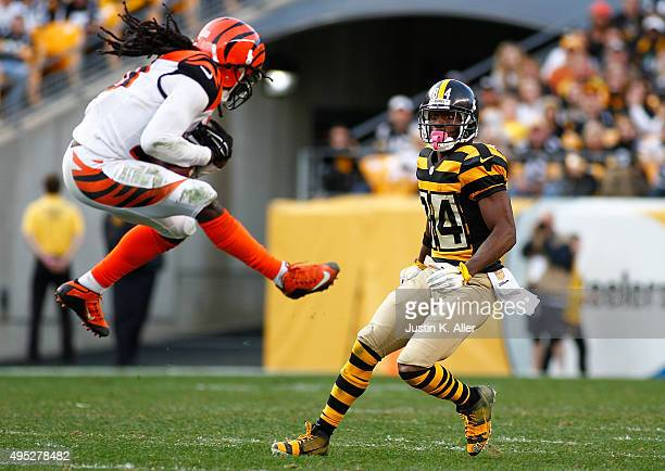 Reggie Nelson of the Cincinnati Bengals intercepts a pass intended for Antonio Brown of the Pittsburgh Steelers in the 4th quarter of the game at...