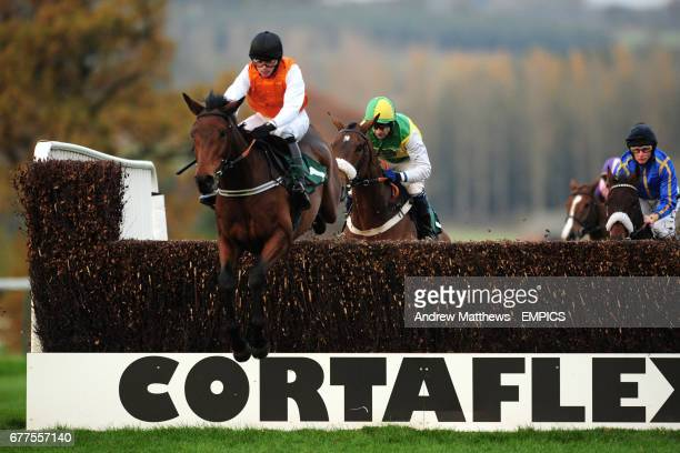 Reg's Ruby ridden by Tommy Phelan jumps the fence during the Jane Cheney Memorial Novices' Handicap Chase