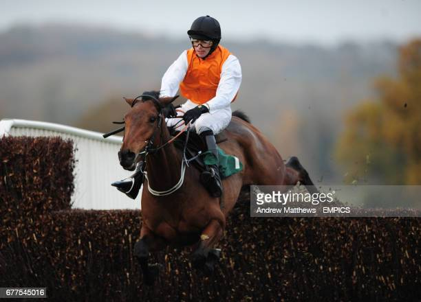 Reg's Ruby ridden by Tommy Phelan jumps the last in the Jane Cheney Memorial Novices' Handicap Chase