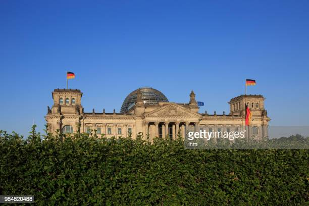 Reichstag building with a bush in the foreground (german parliament building) - Berlin, Germany