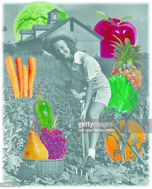 Reid Brown color photo illustration Woman hoeing in garden surrounded by images of vegetables etc that can be planted in the fall