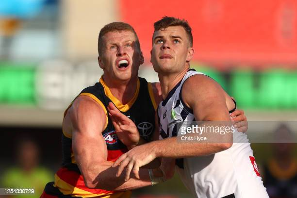 Reilly O'Brien of the Crows and Sean Darcy of the Dockers compete for the ball during the round 5 AFL match between the Adelaide Crows and the...