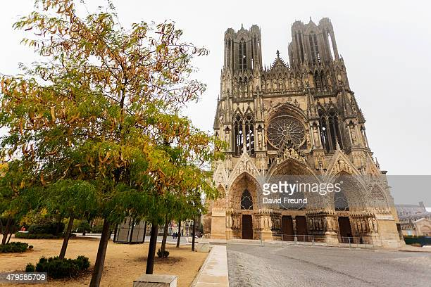 reims cathedral - reims cathedral stock pictures, royalty-free photos & images