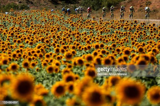 Rein Taaramäe of Estonia and Team Intermarché - Wanty - Gobert Matériaux red leader jersey and the peloton passing through flowery landscape during...