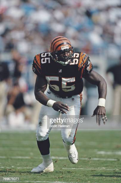 Reinard WilsonLinebacker for the Cincinnati Bengals during the National Fottball Conference West game against the Carolina Panthers on 26 September...