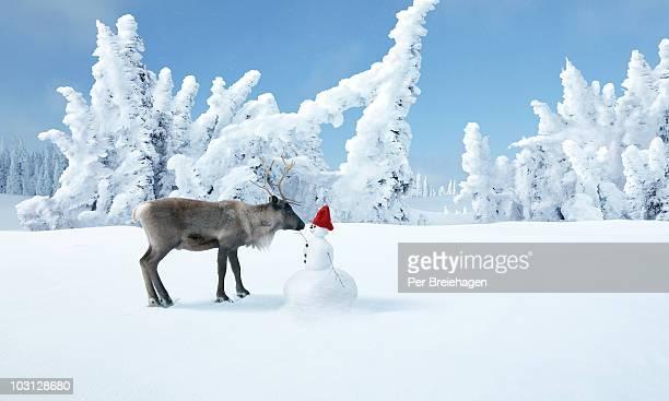 A reindeer and a snowman in a winter wonderland