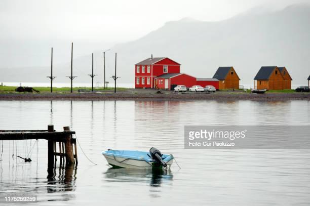 reindeer antler under a wooden jetty at eskifjordur, eastern iceland - austurland stock-fotos und bilder