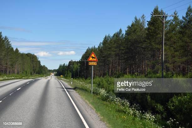 Reindeer crossing sign at road near Vaasa, Finland