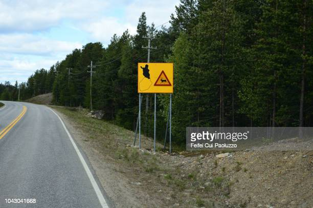 Reindeer crossing sign on the road near Inari, Finland