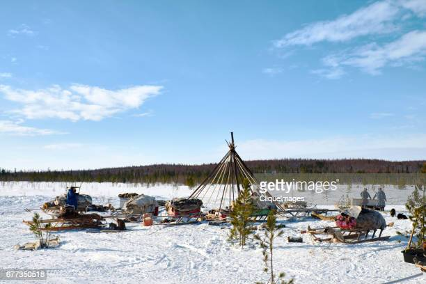 reindeer herder camp in northern siberia - cliqueimages - fotografias e filmes do acervo