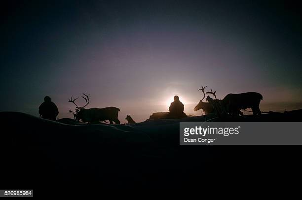 Reindeer Herders Silhouetted at Sunset