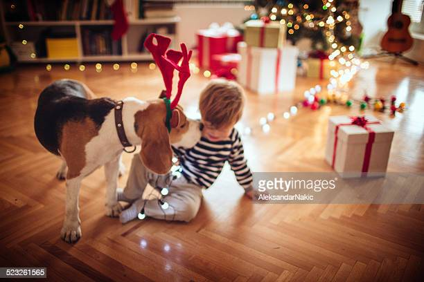 Rudolph kissing a little boy for Christmas
