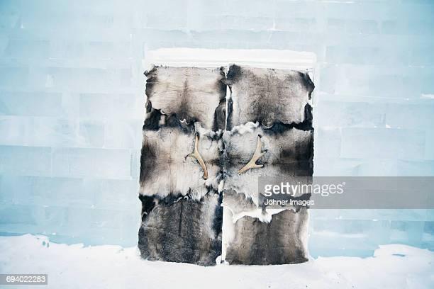 reindeer skin on ice door - ice hotel sweden stock pictures, royalty-free photos & images