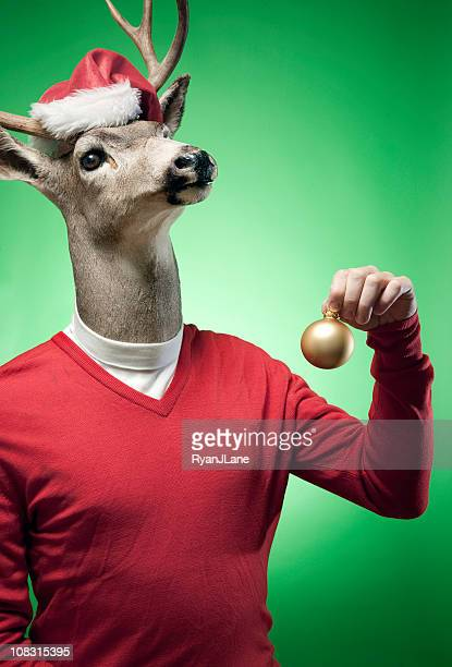 Rudolph The Red Sweater Reindeer