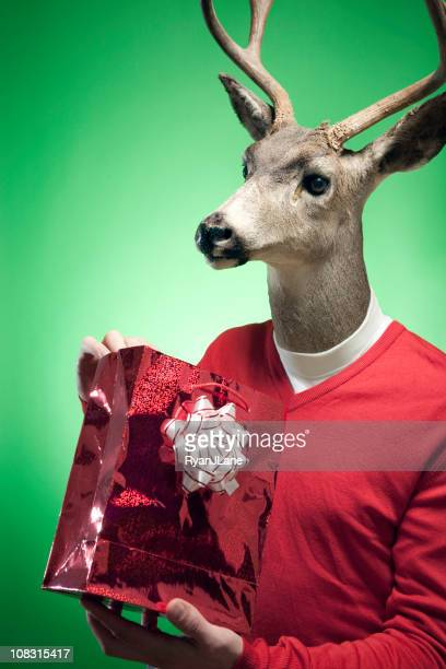 Rudolph The Red-Pullover mit Rentiermotiv