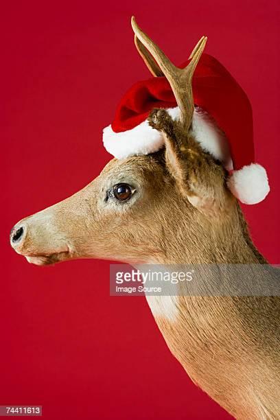 A reindeer wearing a santa hat