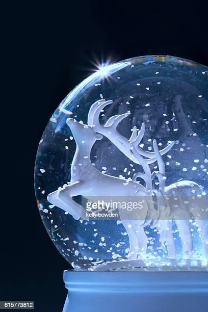 reindeer winter snow globe