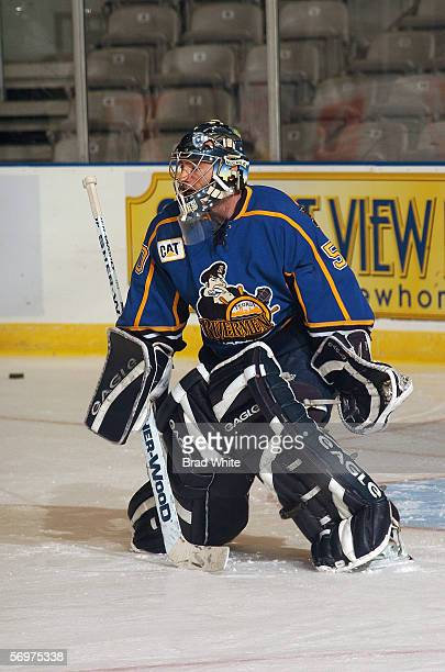 Reinhard Divis of the Peoria Rivermen tends goal against the Toronto Marlies at Ricoh Coliseum on February 3 2006 in Toronto Ontario Canada The...