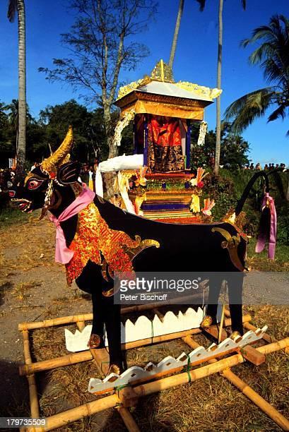 Reise Bali Indonesien Asien Totenverbrennung Prozession Hindu Hinduismus Zeremonie Symbol