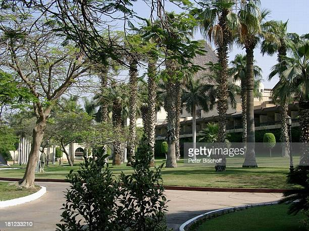 Reise, Gizeh/Ägypten/Afrika, , Oase, Palmen, Rasen, Historische Gebäude,