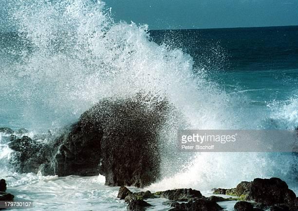 Reise, Maui/Hawaii, Nordamerika, Amerika, USA, Südsee, Meer, Felsen
