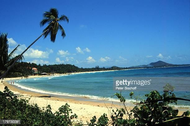 Reise Thailand Asien Koh Samui ChawengStrand Palmen Wasser
