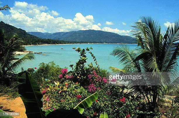 Reise Thailand Asien Koh Samui Lamai Strand Wasser Blumen Berg