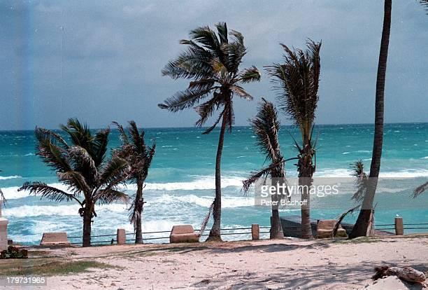 Reise, Varadero/Kuba/Karibik, Strand, Palmen, Meer,