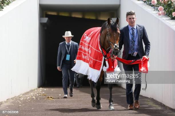 Rekindling returns to the stables after winning the 2017 Melbourne Cup Carnival on November 7 2017 in Melbourne Australia Chris Putnam / Barcroft...