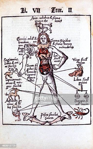 Relationship of the organs of the body the Humours and signs of the Zodiac 1508 For example Leo sole house of the Sun governs the heart hence the...