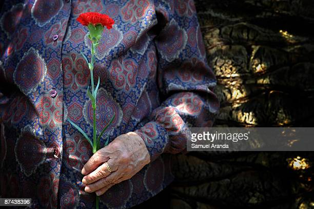 Relative of civil war victims holds a carnation flower during the funeral for those killed and buried in a mass grave during the Civil War on May 16...