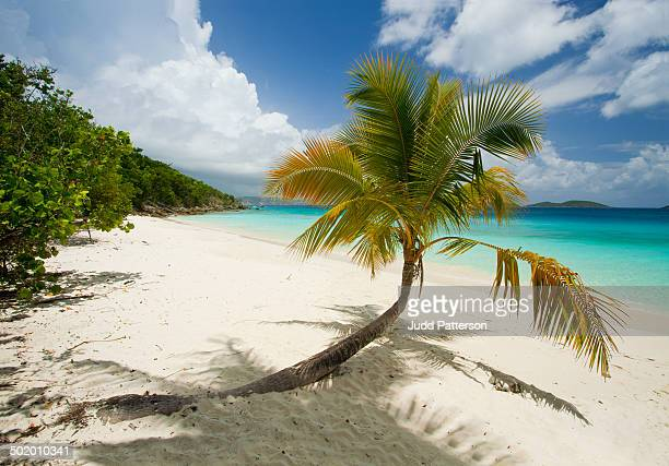 relax in the virgin islands - the slants stock pictures, royalty-free photos & images