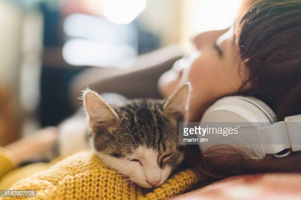relaxed girl with cat listening to music - feline stock pictures, royalty-free photos & images