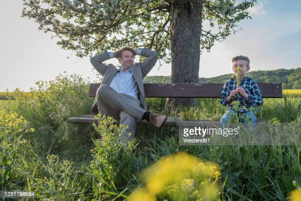 relaxed man looking away while sitting by son smelling flowers on bench at park against sky - hände hinter dem kopf stock-fotos und bilder