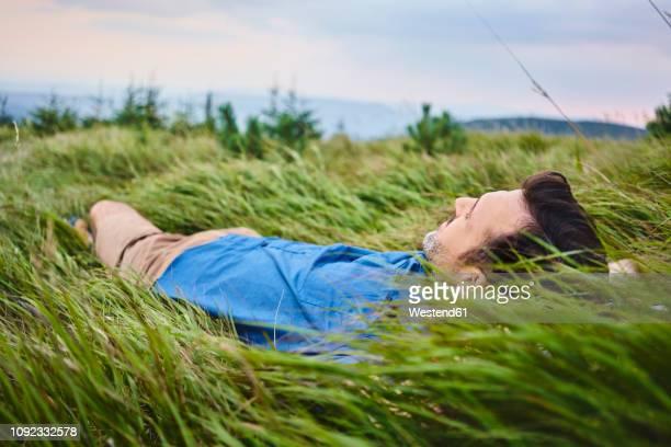 relaxed man lying in grass - liegen stock-fotos und bilder
