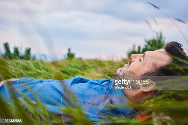 relaxed man lying in grass - lying down foto e immagini stock