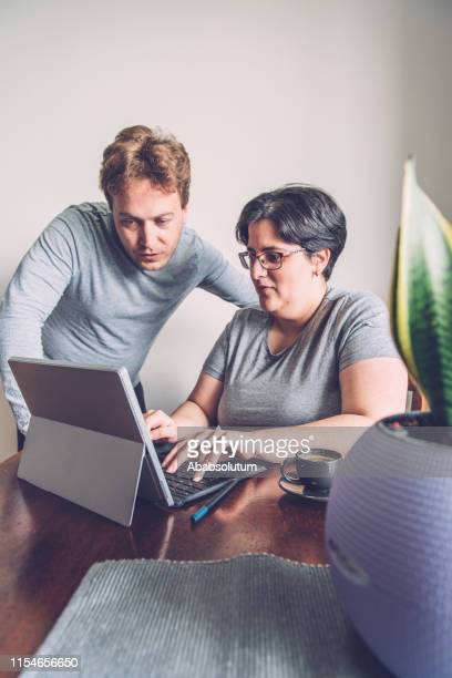 a relaxed millennial couple using laptop at home, europe - sanseveria trifasciata stock pictures, royalty-free photos & images
