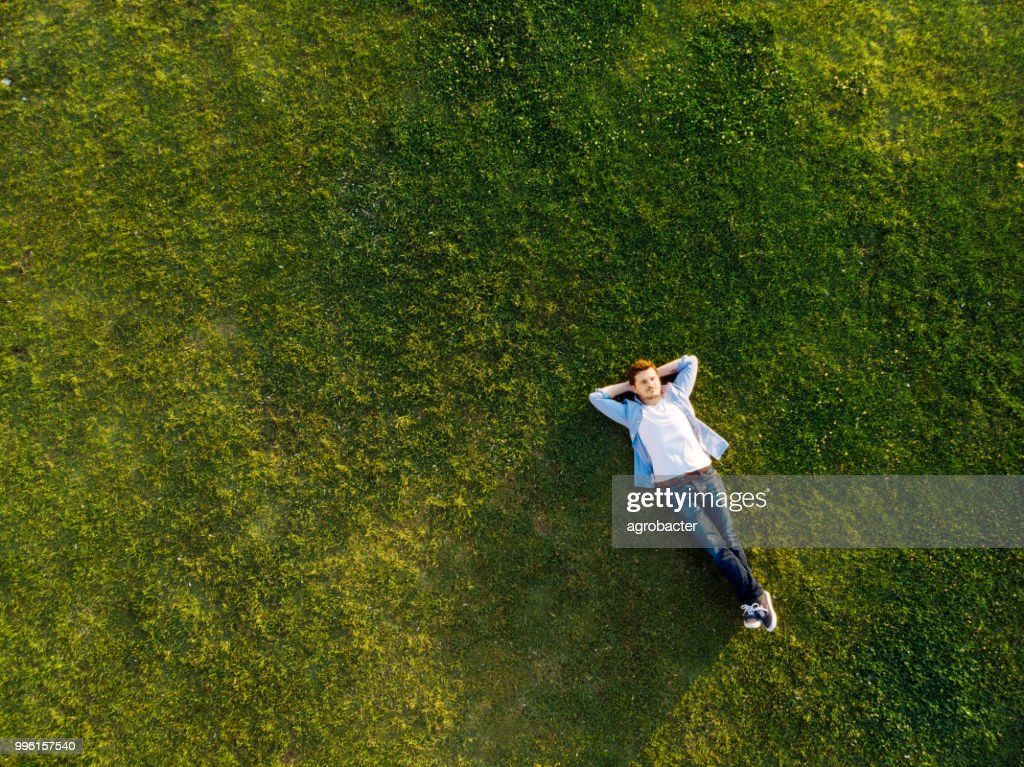 Relaxed young man sleeping on grass : Stock Photo