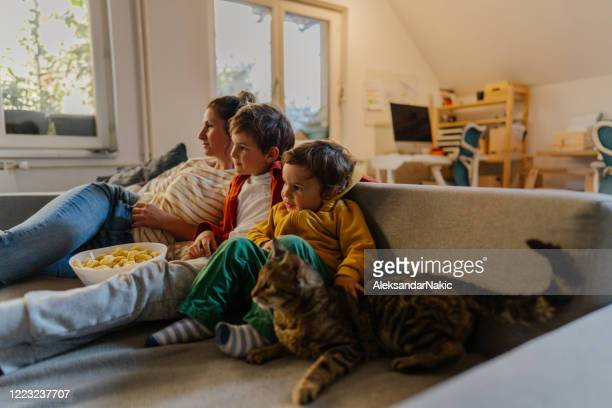 relaxing at home - cosy stock pictures, royalty-free photos & images