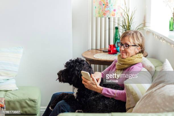 relaxing at home - mature women stock pictures, royalty-free photos & images
